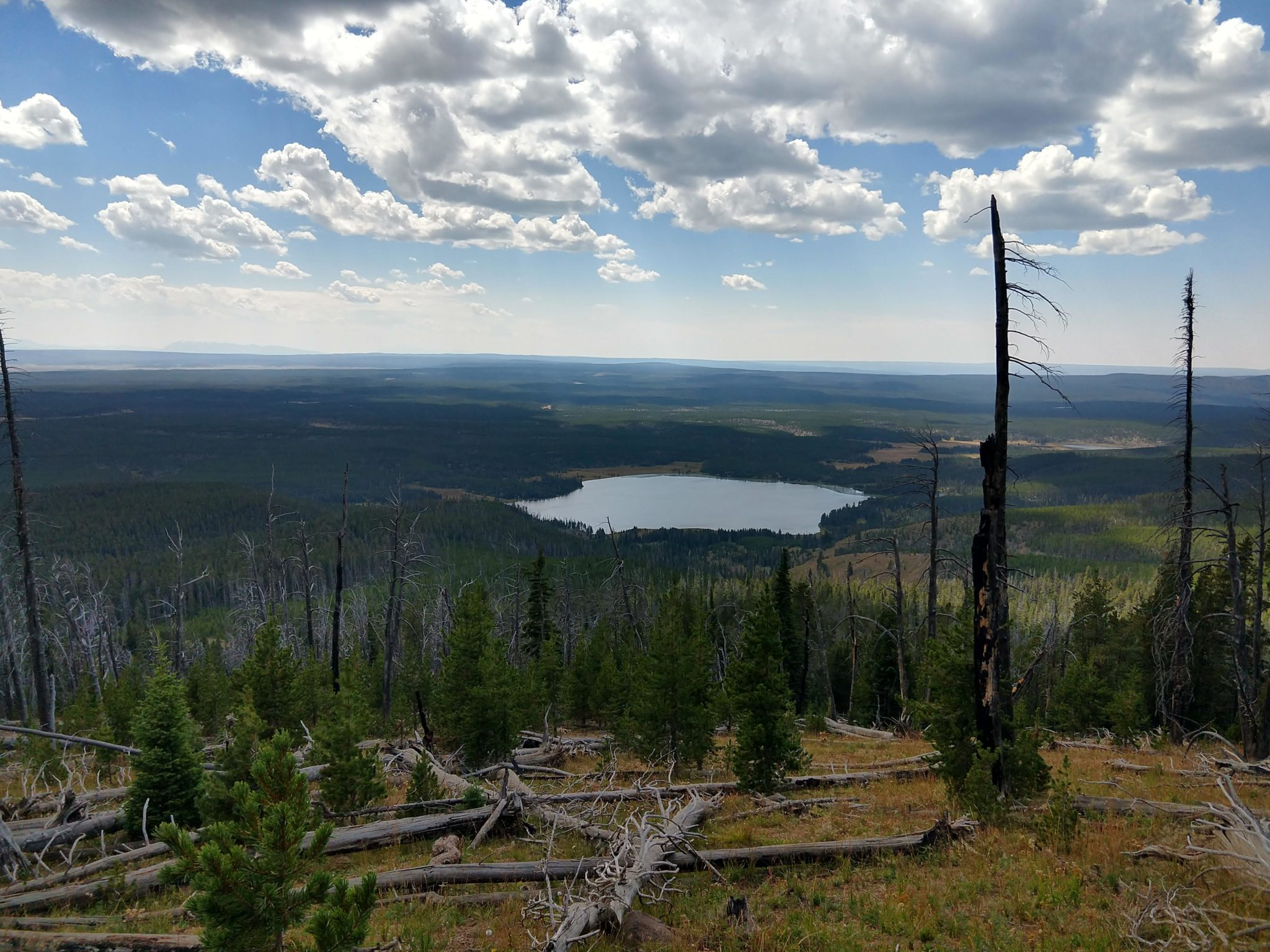 Avalanche Peak Hike (Yellowstone National Park ... |Peak Hike Yellowstone